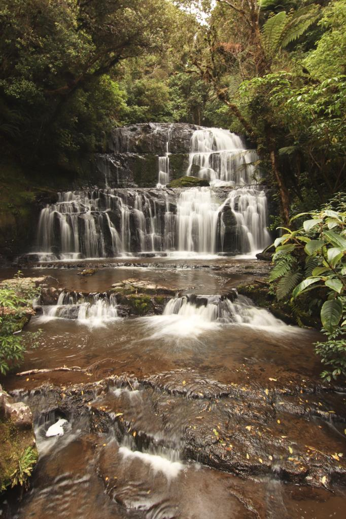 Die Southern Scenic Route durch die Catlins